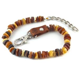 Collier d'Ambre Brut Multicolores Mousqueton pour Chien et Chat